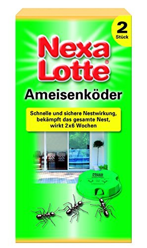nexa lotte ameisen k der 2 st ameisenkoeder test. Black Bedroom Furniture Sets. Home Design Ideas